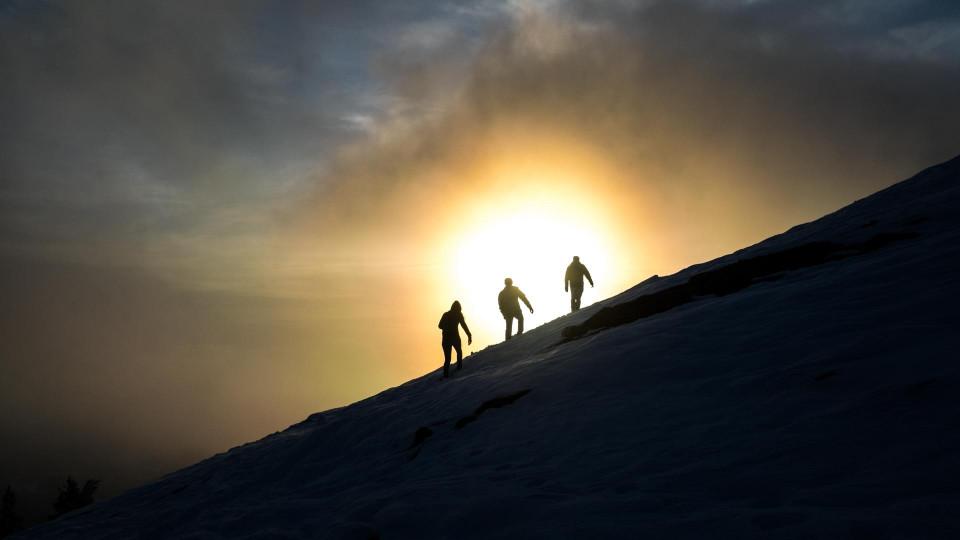 Antarktis-expeditionshafter Sonntagsausflug
