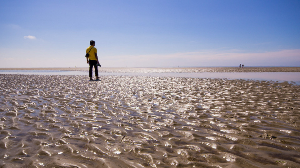 Nationalpark Wattenmeer...mit Inder