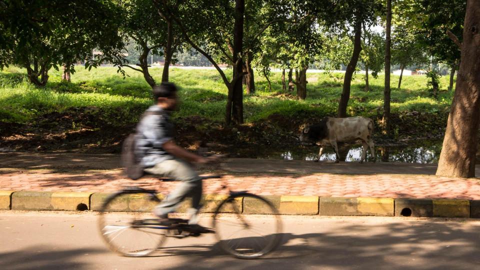 So kann Indien aussehen
